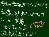 [2010-05-03 16:30:50] 金魚ぉぉぉおおお!!!