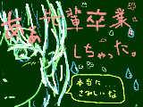 [2017-03-20 13:06:40] 桜って意外と嫌いかも…
