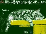 [2008-12-21 13:04:13] 無題
