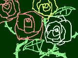 [2009-05-30 00:17:59] バラ