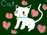白猫・・・だよね?