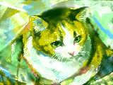 [2009-12-19 02:51:21] 猫はいいよねぇ、癒されるよ