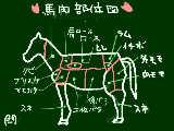 馬肉部位図(菅乃屋公式サイトより)
