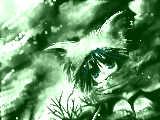 [2010-01-18 12:21:38] 冬空