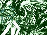 [2010-06-11 16:38:20] 天使の森はどこかしら