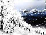 [2011-01-05 13:27:52 雪