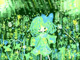 [2011-05-28 18:43:45] A lonesome of Kana