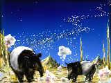[2012-04-04 23:16:51 夢を食べる動物の居る星
