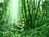 [2012-05-18 15:45:32] 森の奥には