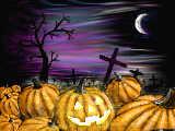 [2013-10-30 19:26:17] 夜のかぼちゃ畑