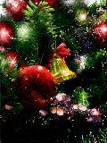 [2009-12-25 16:21:13] Christmas tree