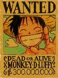 [2010-07-02 17:24:26] LUFFY