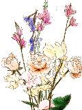 [2012-04-10 22:43:33] 今週の職場の花