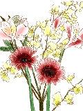 [2012-05-21 23:30:03] 今週の職場の花