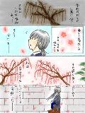 [2013-02-27 22:45:22] 卒業式は完全に梅の時期です(・ω・;)
