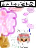 饅頭学校WWW