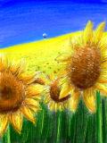 [2014-05-29 23:44:53] 太陽が咲く