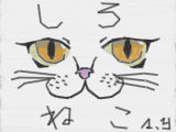 [2017-04-16 17:12:09] 白猫